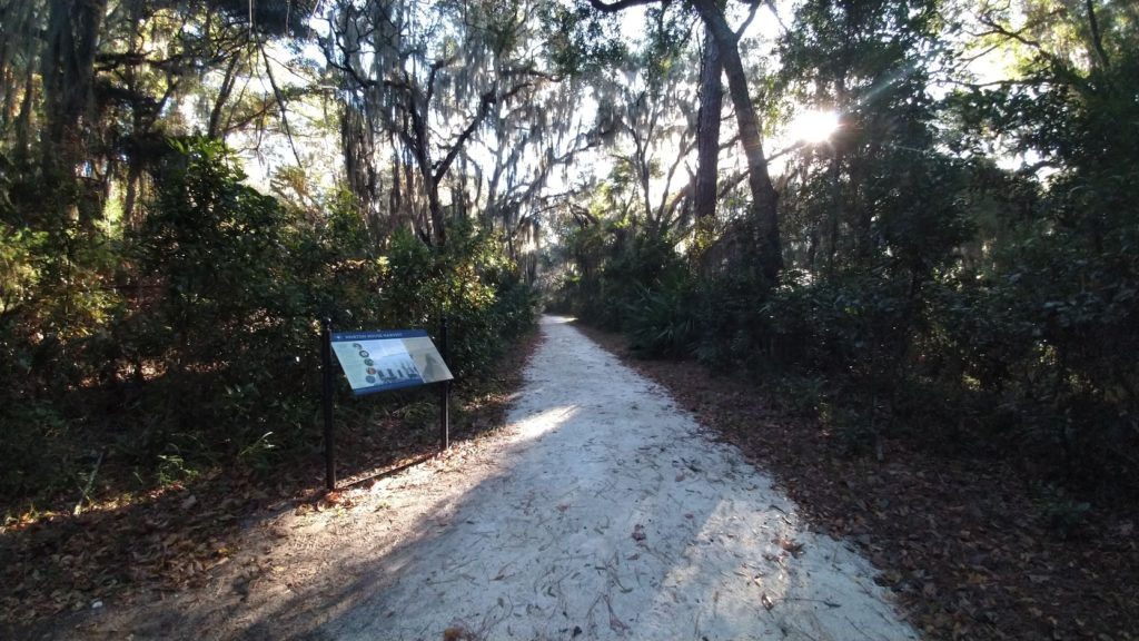 Horton Road on Jekyll Island